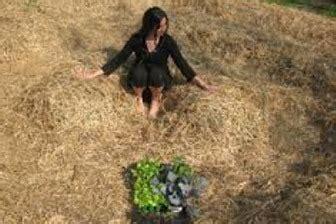 il giardino di emilia hazelip come fare un orto sinergico