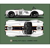 Shelby Cobra 427  PAINT SCHEMES AC COBRAS AND MORE