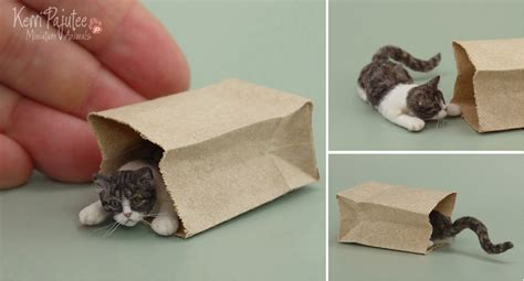 cat doll house dollhouse miniature peekaboo cat july 2013 by pajutee on deviantart