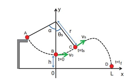 physics swing the counterintuitive physics of tarzan swings mit