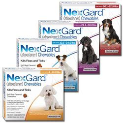 Bravecto Flea Pill For Cats - flea and tick prevention nexgard chewables