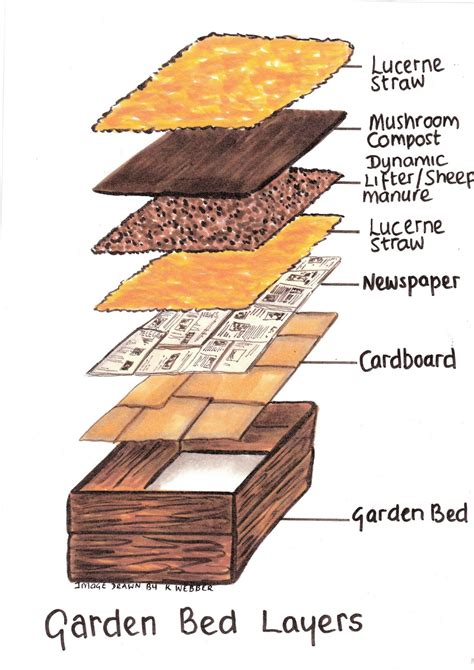 how to layer a bed how to make raised garden beds for vegetables the