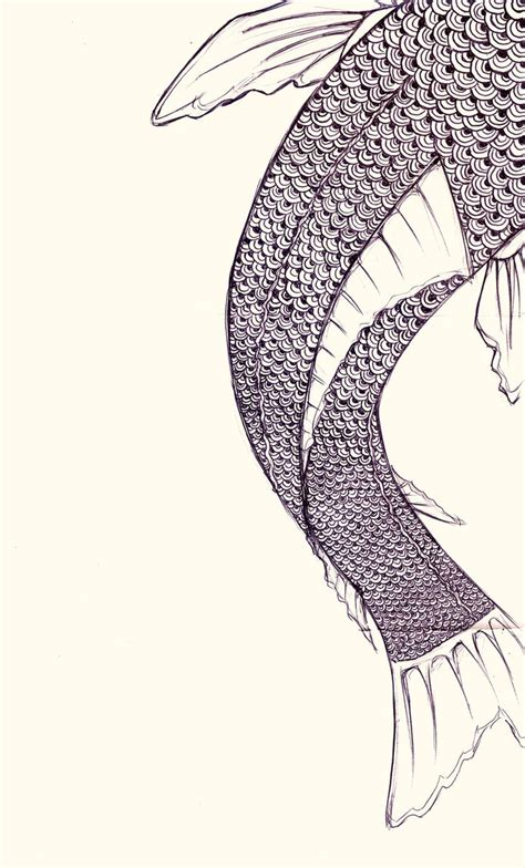 Fish Scales Drawing fish scales drawing