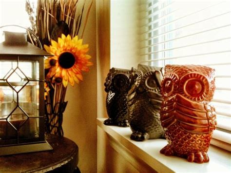 Owl Decor For Living Room by 50 Owl Decorating Ideas For Your Home Ultimate Home Ideas