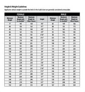 puppy weight chart template doc 585625 puppy growth chart template sle puppy