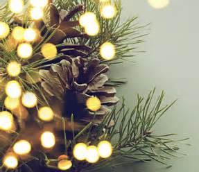 welcher weihnachtsbaum nadelt am wenigsten