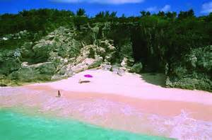 Beaches With Pink Sand Pink Sand Beach A Gorgeous Beach In The Bahamas