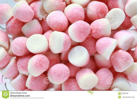 Sweet Sugar sweet sugar candies royalty free stock photo