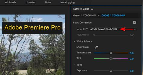 adobe premiere pro luts capture shooting movies on sony alpha cameras using