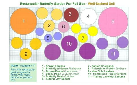 Butterfly Flower Garden Plans 20 Scale 1 Square 1 To Butterfly Garden Layout