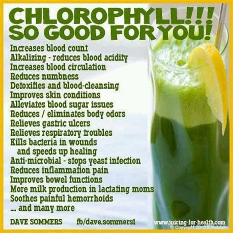 Chlorophyll Detox Benefits by 390 Best Images About Beverages Healthy On