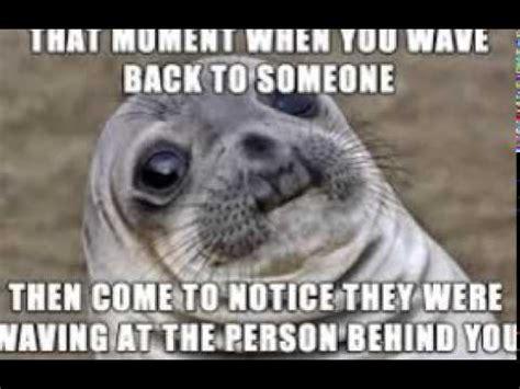 For Seal Meme - seal memes so cool youtube