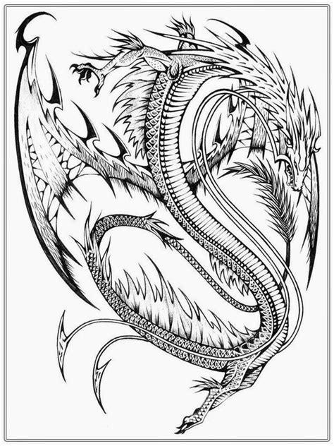coloring pages for adults dragon realistic dragon coloring pages for adults coloring home