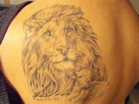 lion and lamb tattoo designs cool tattoos designs