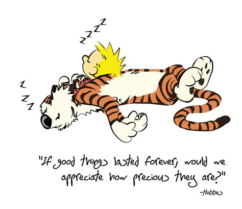 calvin and hobbes calvin and hobbes friendship quotes quotesgram