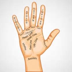 Palmistry meanings traits and characteristics lines markings
