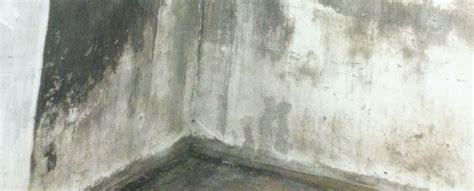 Schimmel In Zimmerecke by Schimmel In Zimmerecke Schimmel Entfernen Wand Tipps Vom