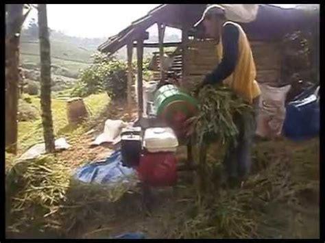 Mesin Panen Padi mesin perontok padi mini lebaknangka power thresher
