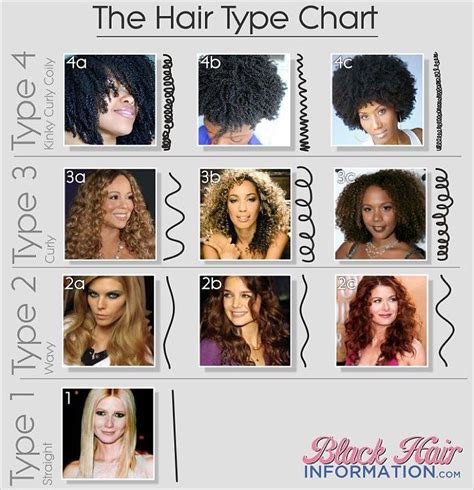different types of hair color for americans 25 best ideas about hair texture chart on pinterest
