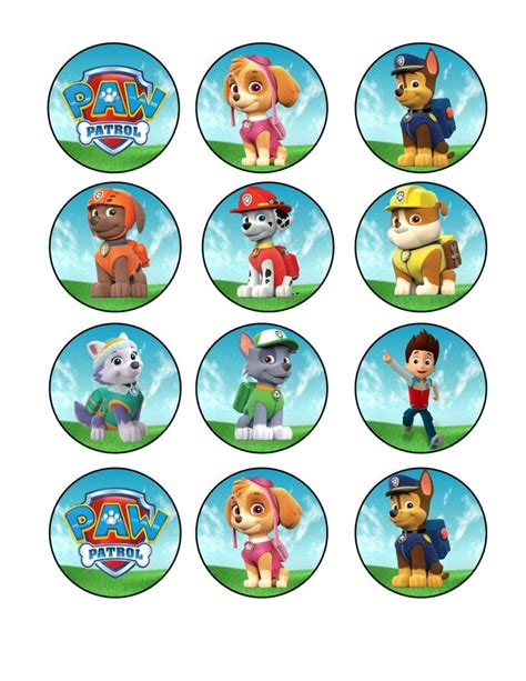 Cake Topper Besar Paw Patrol best 25 paw patrol cupcakes ideas on puppy