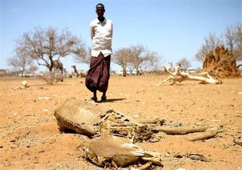 the leadership drought when the thirsty are led by the delirious books declare ongoing drought a national disaster kenya