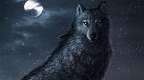 lobo full hd fondo de pantalla and fondo de escritorio lobo negro 1920x1080 fondos de pantalla y wallpapers