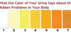 what color is the blood in your 7 urine colors that can tell you important things