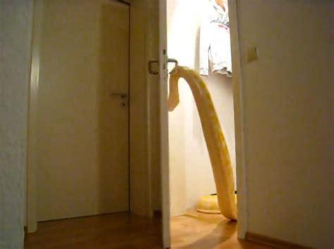 Metro Opens Doors Next by Snake Opens Door In Terrifying Doom Laden