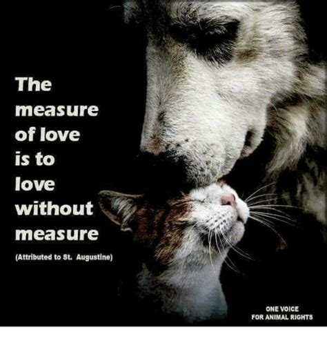 images of love is the measure of love is to love without measure attributed