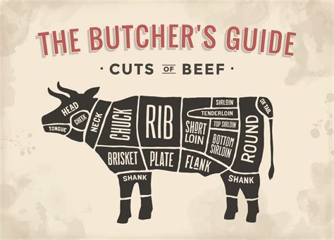 s guide beef cuts overview