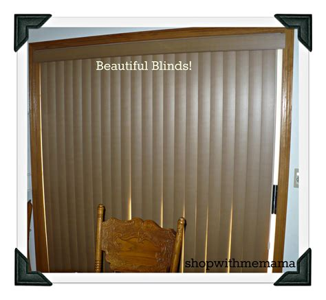 levolor blinds home depot translucent dual shade