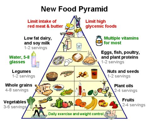Koko Anak Mutif Lmb 19 Uk 6 8 food pyramid health info