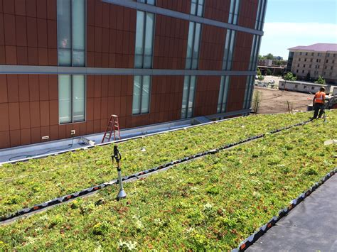 liveroof green roof systems liveroof hybrid green roofs liveroof 174 green roof unites