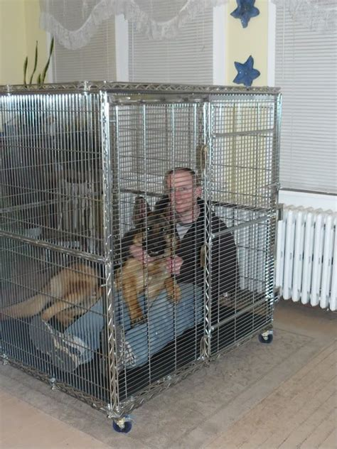 crate german shepherd puppy 1000 ideas about forum on maltese puppies maltese and maltese dogs
