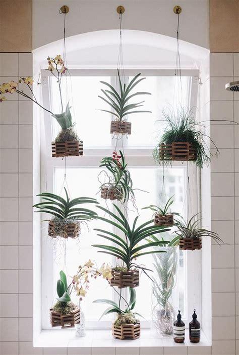 plants for bathroom with no windows foto decore o banheiro com plantas de ana camila vieira