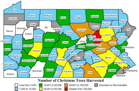 Cfire Quilts by Tree Farms Lancaster Pa 28 Images Farm Bed And