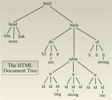 html tree the html document tree html css