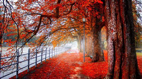 beautiful fall 4k hd desktop park 4k ultra hd wallpaper background image 3840x2160
