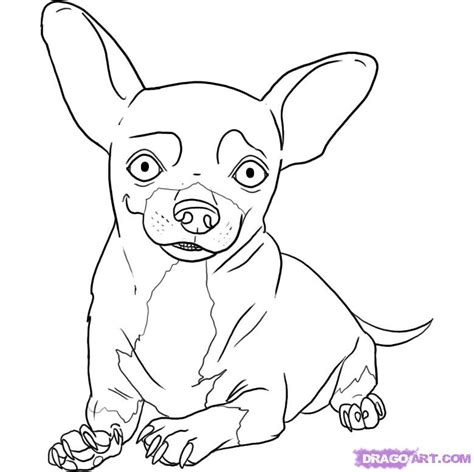 coloring pages chihuahua dogs free coloring pages of puppy chihuahua