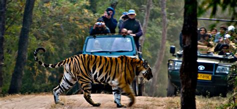 A Marvelous Take On The Safari Look With Out Of Africa by 7 Adventure Activities In India For Of All Age Groups