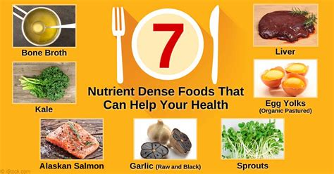 protein dense foods stop counting calories and focus on food nutritional value