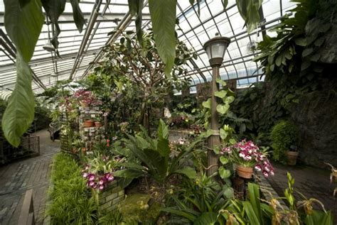 Bien Plantes Et Jardins Com Serres #3: Serre-orchidees-aracees-mt0039963.jpg?itok=XSZxQGoE