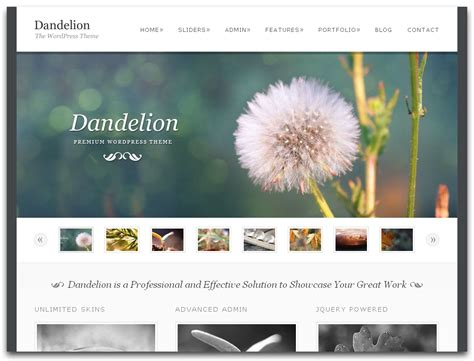 best photography websites website design images gallery category page 5 designtos com