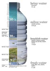 what is the color of water brackish water