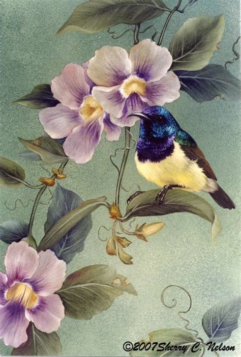 Painting Songbirds With Sherry C Nelson 22 sunbirds with skyvine 9 quot x 12 quot 195 00 sherry c