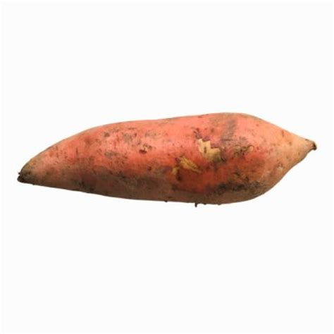 is yam a root vegetable yam popsugar food