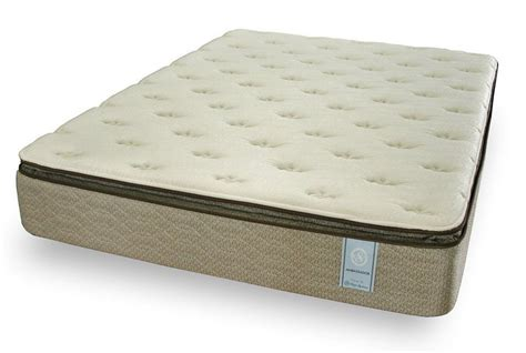 Plush Pillow Top Mattress by Ambassador Plush Pillow Top Mattress Los Angeles