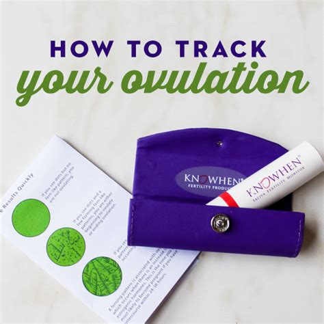 how to your to track how to track your ovulation daily