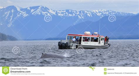 boat dealers juneau alaska alaska whale watching bow of small boat juneau editorial