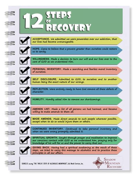 12 Step Detox by 12 Steps Of Recovery Visual Ly